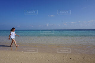 ビーチでフリスビーを投げる人の写真・画像素材[1139347]