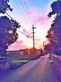 お散歩の写真・画像素材[1500386]