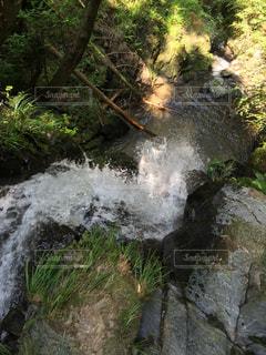 滝の写真・画像素材[440347]
