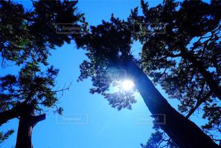 空の写真・画像素材[440506]
