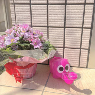 花の写真・画像素材[440852]