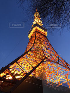東京タワーの写真・画像素材[440870]
