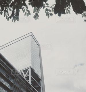 曇り空の写真・画像素材[663250]