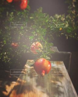 テーブルの上の花の花瓶の写真・画像素材[782886]