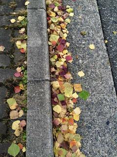 歩道に靴のグループの写真・画像素材[1278556]