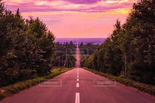 夕日の写真・画像素材[441533]