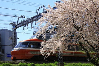 春 - No.441692