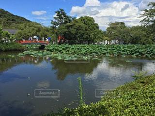 風景 - No.441749