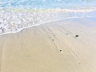 浜辺の波打ち際の写真・画像素材[2854696]