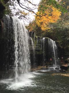滝 - No.443618