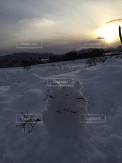 雪の上を飛ぶ鳥の群れに斜面が覆われています。の写真・画像素材[714451]