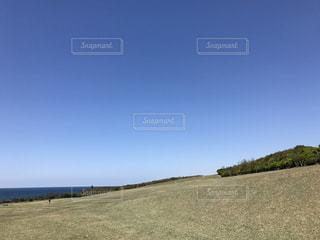 芝生の写真・画像素材[444967]