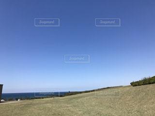 芝生の写真・画像素材[444968]