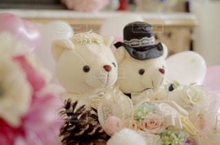 結婚式の写真・画像素材[445399]