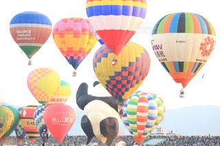 気球の写真・画像素材[445477]
