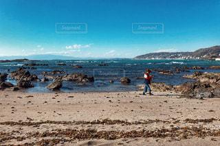 三浦海岸散策の写真・画像素材[1993786]
