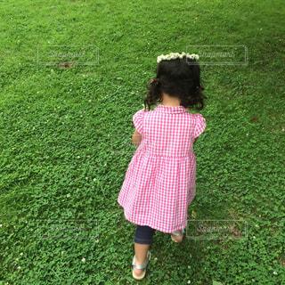 子どもの写真・画像素材[504849]