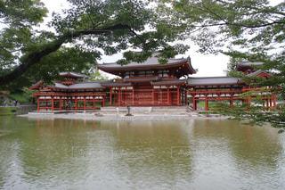 平等院鳳凰堂の写真・画像素材[1209782]