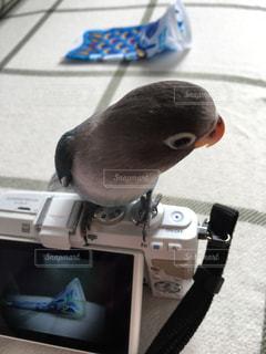 No.451510 カメラ