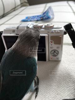 No.451518 カメラ