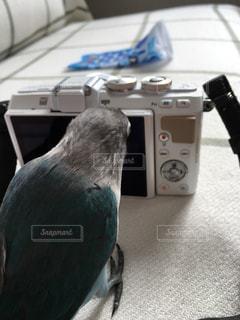 No.451519 カメラ