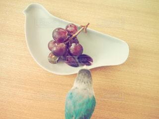 鳥と鳥型お皿 - No.764112