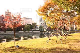 No.446841 公園