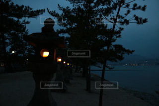 自然の写真・画像素材[446876]