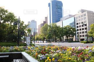 No.509539 風景