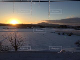 冬の写真・画像素材[447083]