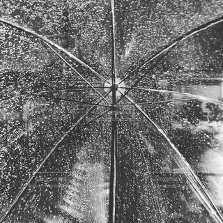雨の日にかさを差しての写真・画像素材[1031176]