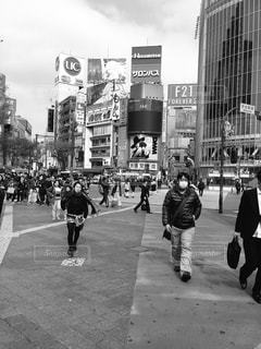 東京の写真・画像素材[449179]