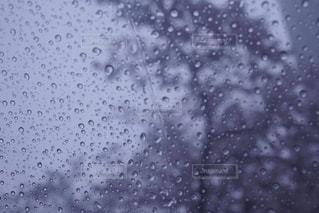 雨 - No.448284