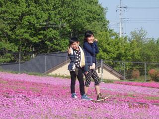 散歩 - No.450006