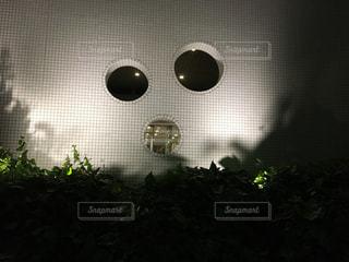 夜の写真・画像素材[496587]