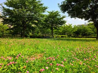 公園 - No.632190
