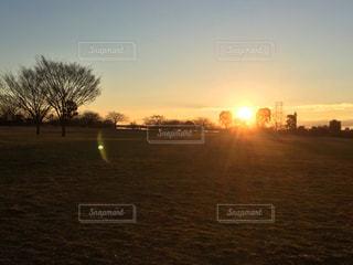 朝焼けの公園の写真・画像素材[924167]