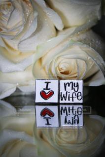 結婚式の写真・画像素材[459137]