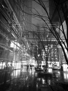 白黒の写真・画像素材[490856]