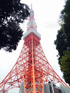 東京タワーの写真・画像素材[450970]