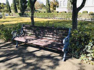公園のベンチの写真・画像素材[2798014]