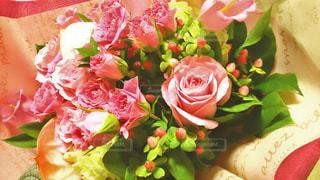 近くの花のアップの写真・画像素材[1306059]