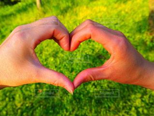 LOVEの写真・画像素材[547787]