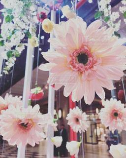 花の写真・画像素材[2149154]