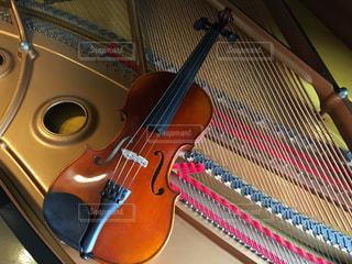 バイオリンの写真・画像素材[451389]