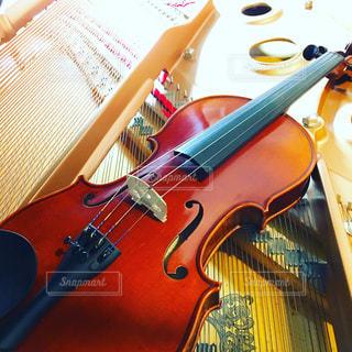 バイオリンの写真・画像素材[451464]