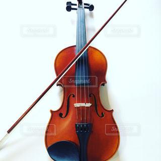 バイオリンの写真・画像素材[451495]