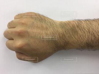 腕の写真・画像素材[474356]