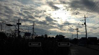 空の写真・画像素材[636055]