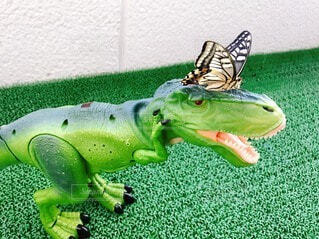 恐竜の顔にアゲハ蝶の写真・画像素材[3671193]